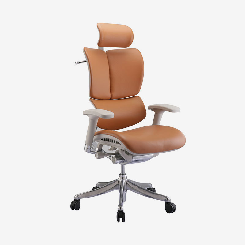 product-Fly unique design Luxury leather ergonomic executive chair with dynamic back HFYL01-Hookay -2