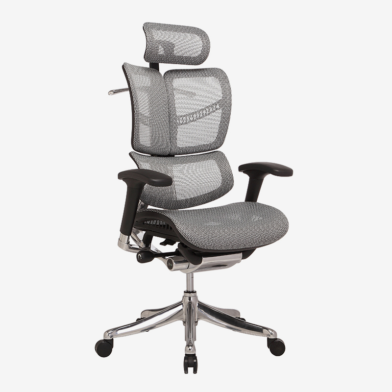 product-Hookay Chair-Fly unique design Luxury ergonomic executive chair with dynamic back HFYM01-im-1