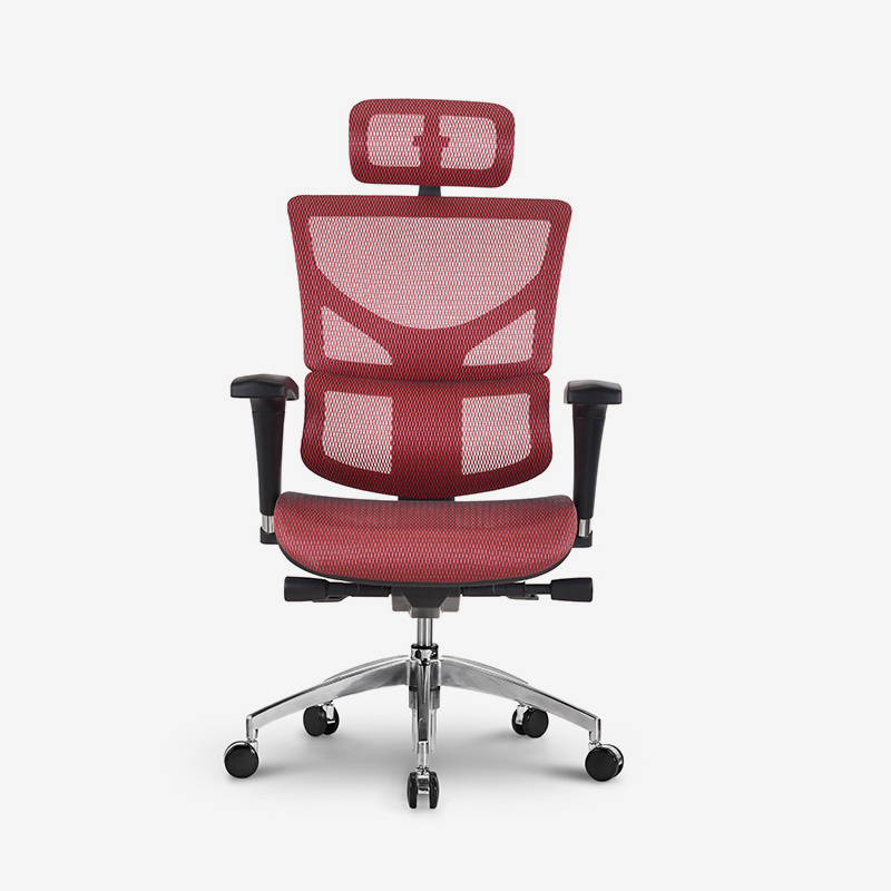 Sail top selling ergonomic home office chair with multifunctional mechanism SASM01