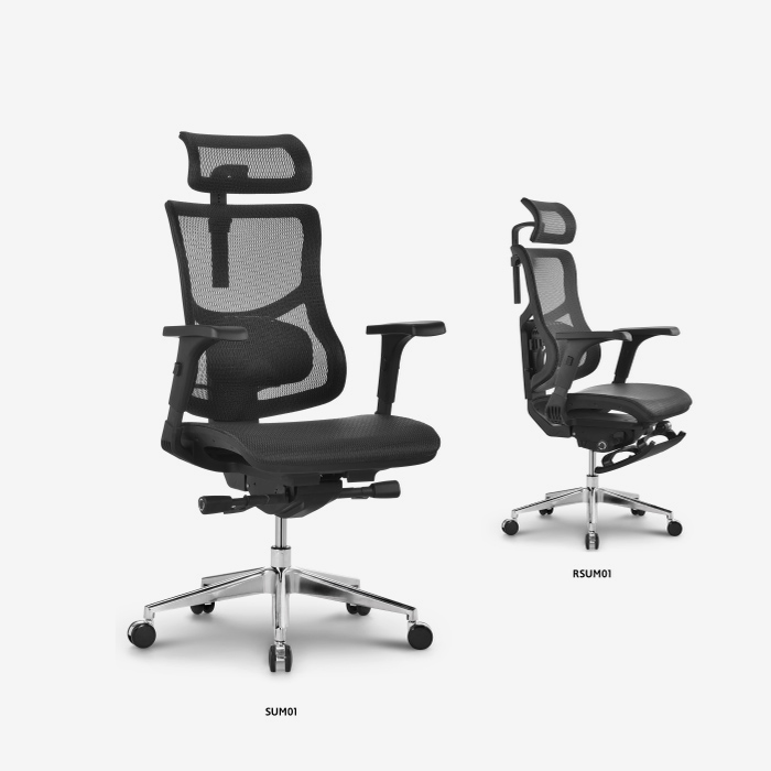 Hookay Chair best ergonomic home office chair price for home office-2